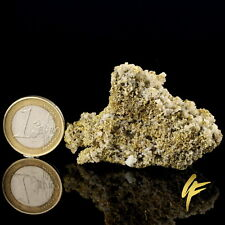 Gold in Quarz | 26,5 Gramm g | Mina Roata | Goldstufe | Gediegen | Nugget 760