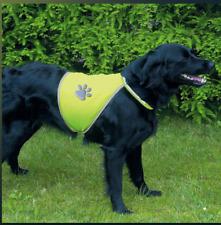 Dog Safety Hi Vis Viz High Visibility Reflective Neon Yellow Luminous Vest Coat