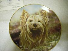 Yorkshire Terriers Dog Collectors Plate by Paul Doyle Plate A2548 edition