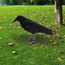 Halloween Decoration Prop Black Raven Crow Bird Haunted Spooky Realistic Looking
