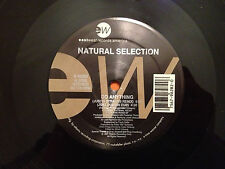 "NATURAL SELECTION - Do Anything - 1991 US 12"" Vinyl 5 mixes - NMINT"