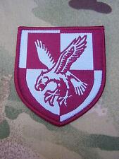 British Army Para 16 Air Assault MTP Combat Jacket/Shirt TRF Eagle Patch/Badge C