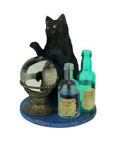 Witch's Apprentice by Lisa Parker Black Cat and Crystal Ball Statue