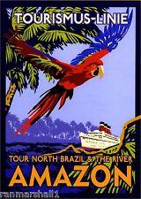 Brazil Amazon River Oceanliner Vintage Parrot Travel Poster Advertisement Print