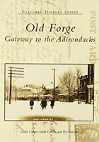 Old Forge: Gateway to the Adirondacks (Postcard History) by Cohen, Linda Book