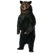 BROWN BEAR CARDBOARD CUTOUT Standee Standup Poster Prop Huge Animal FREE SHIP