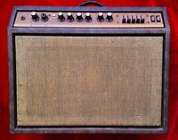 "RARE Acoustic Model 123 guitar amplifier! Vintage G120 combo with 1x12"" speaker!"