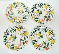 Crate and Barrel Set of 4 Dinner Plates Floral Berries Fruit -Made In Italy