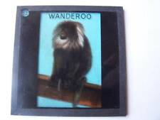 Magic Lantern Slide 3.25 x 3.25 Inch  Rambles Round London Zoological Gardens