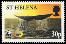 "St. Helena 816 - Sperm Whale ""Physeter catodon"" Wwf (pa83570)"