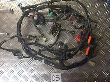 D5 SUZUKI BANDIT GSF650 GSF 650 ABS WIRING LOOM HARNESS *FREE UK POST*