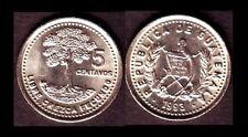 GUATEMALA 5 CENTAVOS 1993 ALBERO MONETA MOLTO RARA DA COLLEZIONE