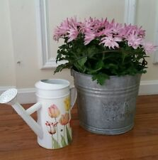 Vintage #10 Galvanized Pail with Handle & Hallmark Watering Can (d18)