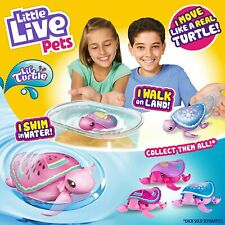 LITTLE LIVE PETS - LIL TURTLES - SWIMS IN WATER, WALKS ON LAND
