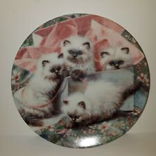 "Kittens Knowles collector plates "" All Wrapped Up Himalayans"" Amy Brackenbury"