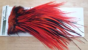 """Whiting"" Pro Saddle..Fly Tying, Flies, Feather. Craft. Uni-Floss. Wire."