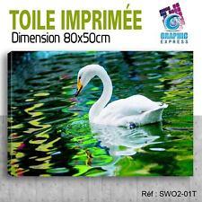 80x50cm - TOILE IMPRIMÉE TABLEAU  POSTER DECO - SWAN - SIGNE - OISEAUX - SW2-01T