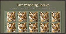 US B4 Save Vanishing Species Amur Tiger Cub First Class header block 10 MNH 2011