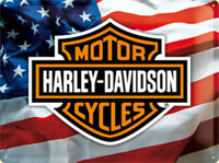 Harley Davidson Stars/ Rayas Grande Relieve Acero Signo 400mm x 300mm (Na )