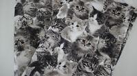 Canvas-Stoff, 50 x 1,40 Kätzchen auf beige