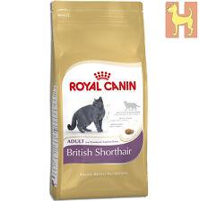 10 kg Royal Canin Feline British Shorthair Adult Katzenfutter - Kurzhaar Katzen