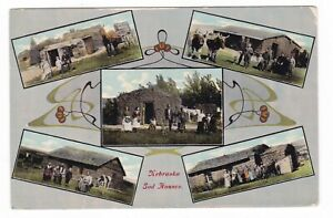 1914 NEBRASKA SOD HOMES CATTLE FAMILIES HORSE BUGGY CUSTER COUNTY OLD POSTCARD !