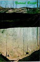 Vtg 1950's Natural Bridge, Bankhead National Forest, Alabama AL Postcard