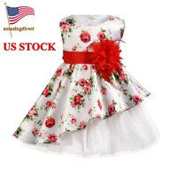 Toddler Baby Girls Irregular Rose Flowers Print Sleeveless Dress Outfits Clothes