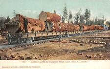 Diamond Match Co.'s Logging Train, Near Chico, CA c1900s Vintage Postcard