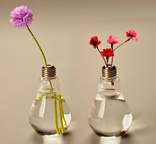 1x Bulb Shape Vase Transparent Table Glass Terrarium Plant Flower Decoration