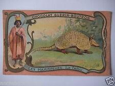 "CHROMOS ANNÉE 1890-1900 CHOCOLAT GUÉRIN-BOUTRON LES MAMMIFÈRES "" LE TATOU """