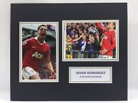 RARE Javier Hernandez Manchester United Signed Photo Display + COA AUTOGRAPH