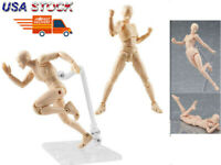 1Pcs PVC Female Movable Action Figma Figure Anime Body Doll Drawing Model Toy US