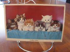 "Vintage ""Kuddly Kittens"" Postcard"