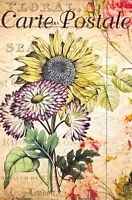 Postcard French Vintage Shabby Chic Style, Flowers, Sunflower, Floral, 99J