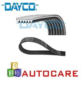 Dayco 6PK975 V-Ribbed Belt For Volvo C30, S40, S60, S80, V60, V70