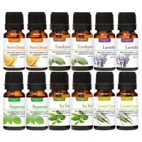 Top 12 Blends Essential Oil Set (100% PURE & NATURAL) Therapeutic Grade