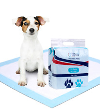 Disposable Pet and Puppy Training Pads - Large - 60 x 45 cm - Pack of 20 Sheets