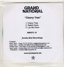 (EV735) Grand National, Cherry Tree - 2004 DJ CD
