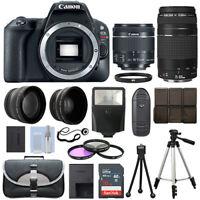 Canon EOS SL2 SLR Camera + 4 Lens Kit 18-55 STM + 75-300mm + 16GB Top Value Kit