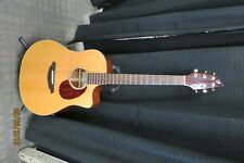BREEDLOVE AD25/SM ACOUSTIC ELECTRIC GUITAR WITH HARDCASE