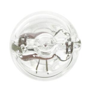 License Light Bulb Wagner Lighting BP168