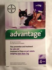 ADVANTAGE purple 2 pack for large cats or rabbits more than 9 pounds