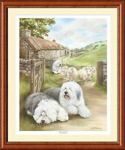 OLD ENGLISH SHEEPDOG dog art print 'Bobtail's Droving'