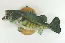 "Vintage Largemouth Bass Real Skin Taxidermy 21"" Fish Mount Lodge Man Cave Decor"