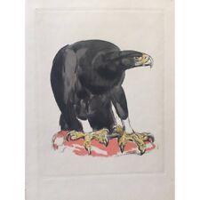 L' Aigle noir Paul JOUVE