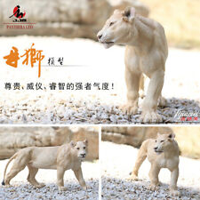 JJM Africa Female Lion Figure Animal Collector Home Decoration Panthera leo Toy