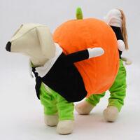 Cute Halloween Carrying Pumpkin Pet Puppy Clothes Dog Cat Jumpsuit Coat Costume