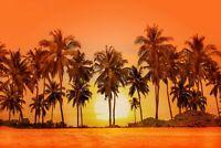 A1 | Orange Sunset Poster Art Print 60 x 90cm 180gsm Palm Tree Beach Gift #8296