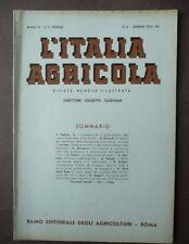 Gastronomia Pecorino Sardo Sardegna Italia Agricola 1935 Profumi Timo Formaggio